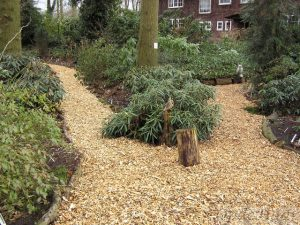 Paths with new wood chippings
