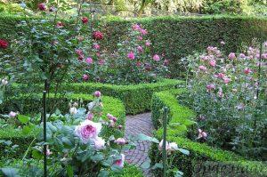 Rozen tuin OpdeHaar tuinen
