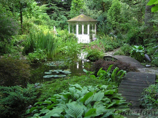OpdeHaar pond and summer house