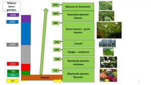 Evolutie van planten op aarde