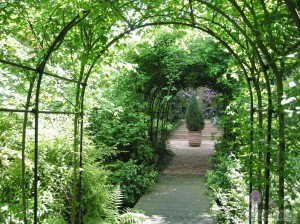The Millennium Garden, created in 2000, containing many different sorts of hosta's.