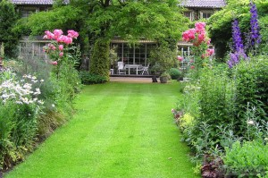 The perennial garden with lawns and border in the English style