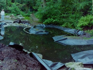 Liner in pond, filling with water