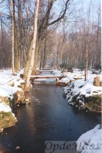 Sloten in het winter