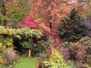 Pergola and perennial borders in Autumn
