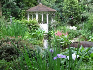 Pond and summerhouse in summer