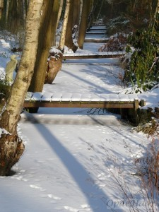 Ditches and bridges in the snow
